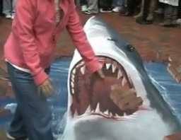 amazing 3d street art, a shark whom you can touch